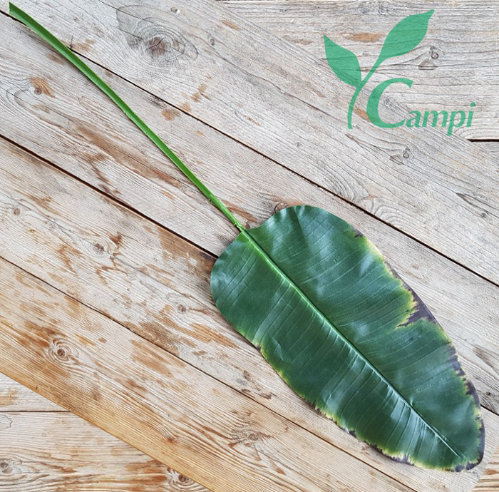 Bananenblatt 115 cm / 60 cm