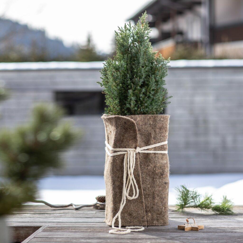 Winterschutz-Schafwollmatte für Pflanzen 38 x 200 cm #1