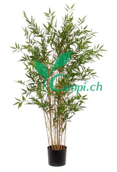 Bambus Japonica Profi Ø70 x 120 cm