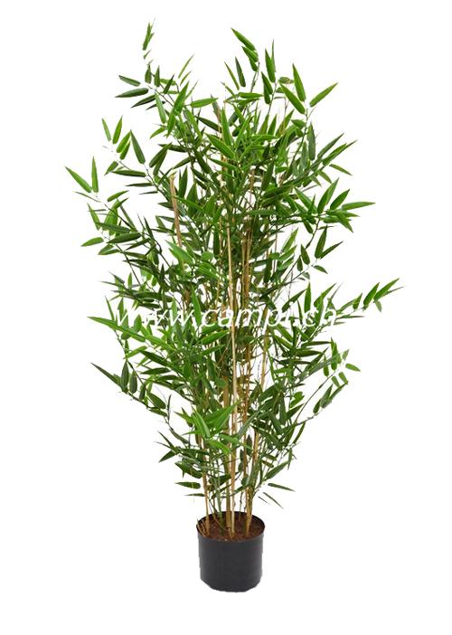Bambus Japonica Profi Ø45 x 90cm #2