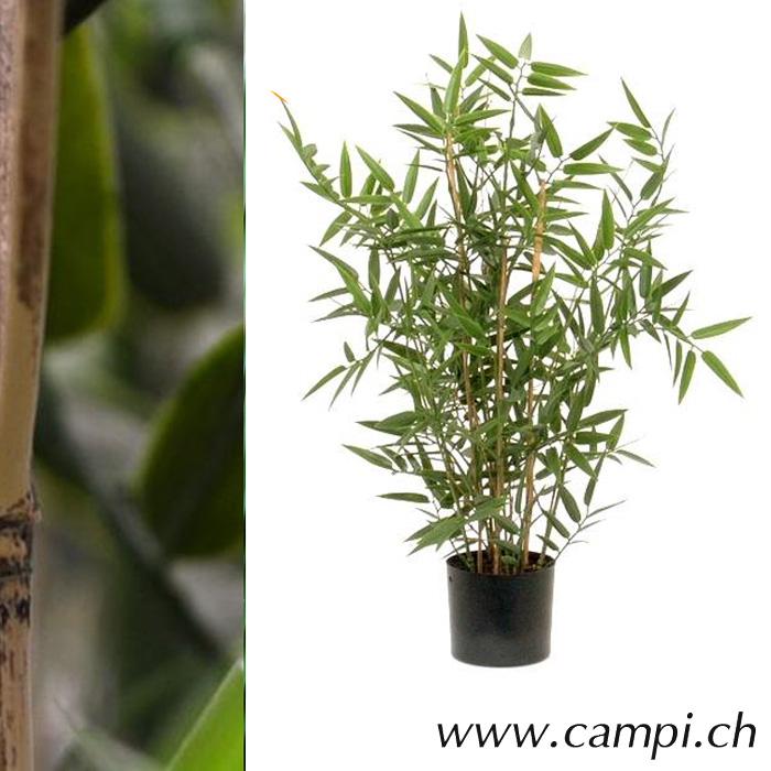 Bambus Japonica Profi Ø30 x 60 cm
