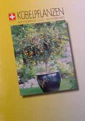 Katalog Kübelpflanzen #1