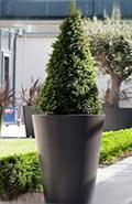 Eternit Pflanzengefäss Palma anthrazit Ø45/26x75 cm
