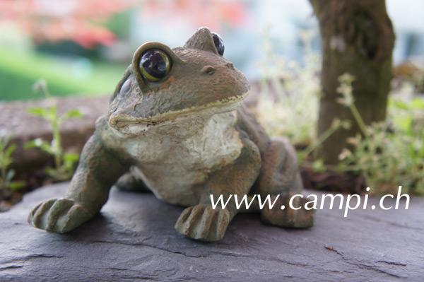 Frosch Gartenfigur L 14 x H 9 cm #3